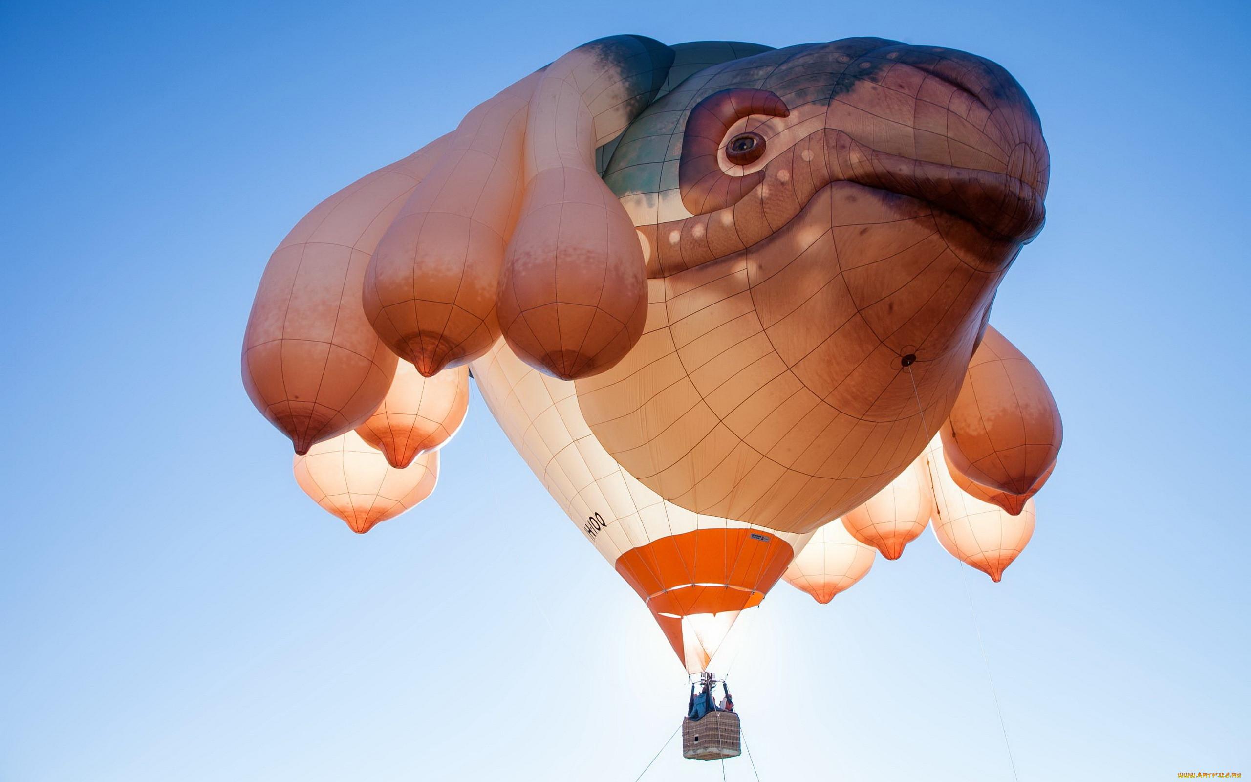 Обои воздушный шар, корзина. Авиация foto 13